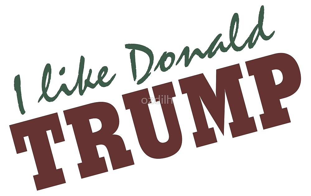 I like Donald Trump 2016 by ozdilh