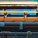 Rails by friendlydragon