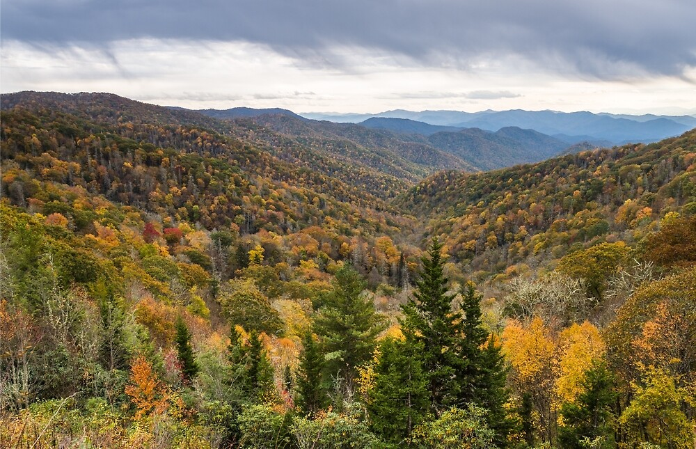 The Smokies by Clay Townsend