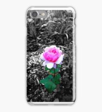 Columbus, OH: Whetstone Rose Garden 1 iPhone Case/Skin