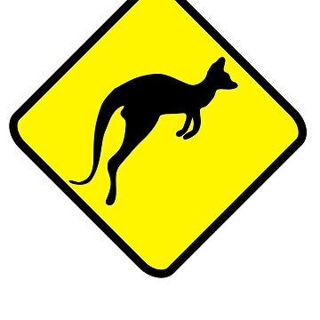 kangaroo by Pferdefreundin