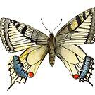 Swallow Tail Butterfly by PaintingsForOak