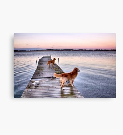 Sunset dogs Canvas Print