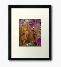 Purple Wild Flower Photo Framed Print