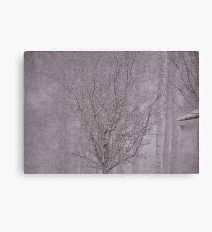 Snowy haiku Canvas Print