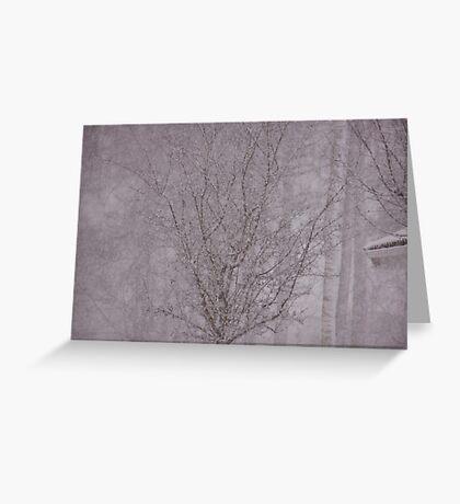 Snowy haiku Greeting Card