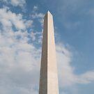 Washington Monument  by Jeanie93