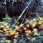 Lehnende Birken Mindscape von Wayne King