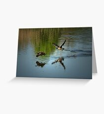 Look! I am flying! Greeting Card