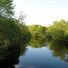 Mystic River by Judi FitzPatrick