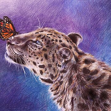 Leopard and Butterfly by AnnaShell