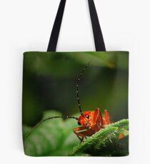 Rhagonycha fulva-Soldier Beetle Tote Bag