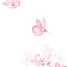 fallendes rosa Kirschblüten-Blumenaquarell 2019 von ColorandColor