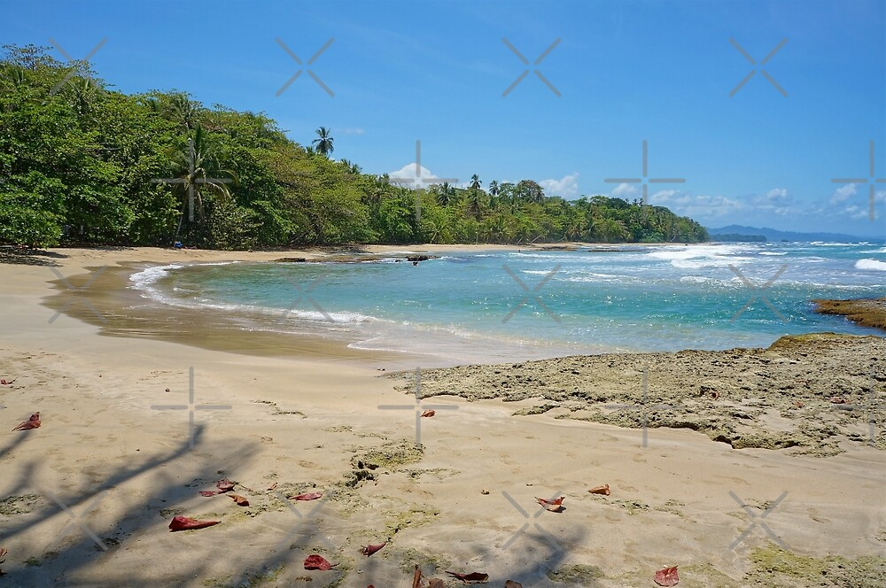 Costa Rica Caribbean beach by Dam - www.seaphotoart.com