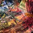 Dragonfly Lifted  by Susan  Detroy
