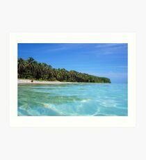 Caribbean island shore with turquoise water Art Print