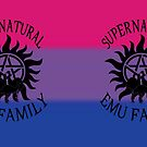 Bisexual Pride Mug by EmuMob