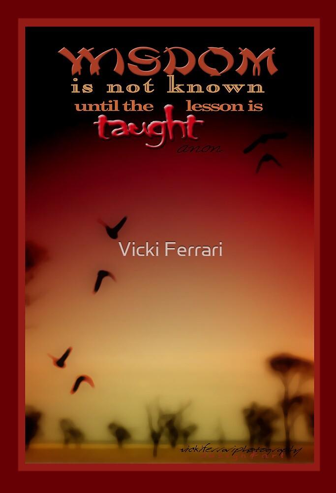 Wisdom © Vicki Ferrari Photography by Vicki Ferrari