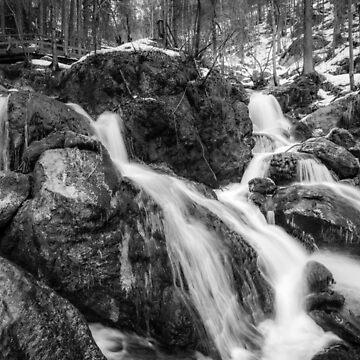 Alpine winter, Austria by PeterCseke