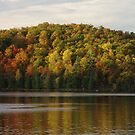 Fall Colors - Meech Lake, Gatineau, PQ by Tracey  Dryka