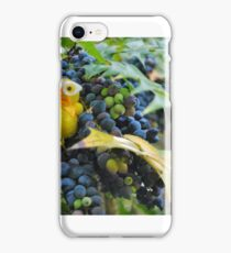 Berried Chick iPhone Case/Skin