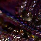 *exotic hues* by funkymarmalade