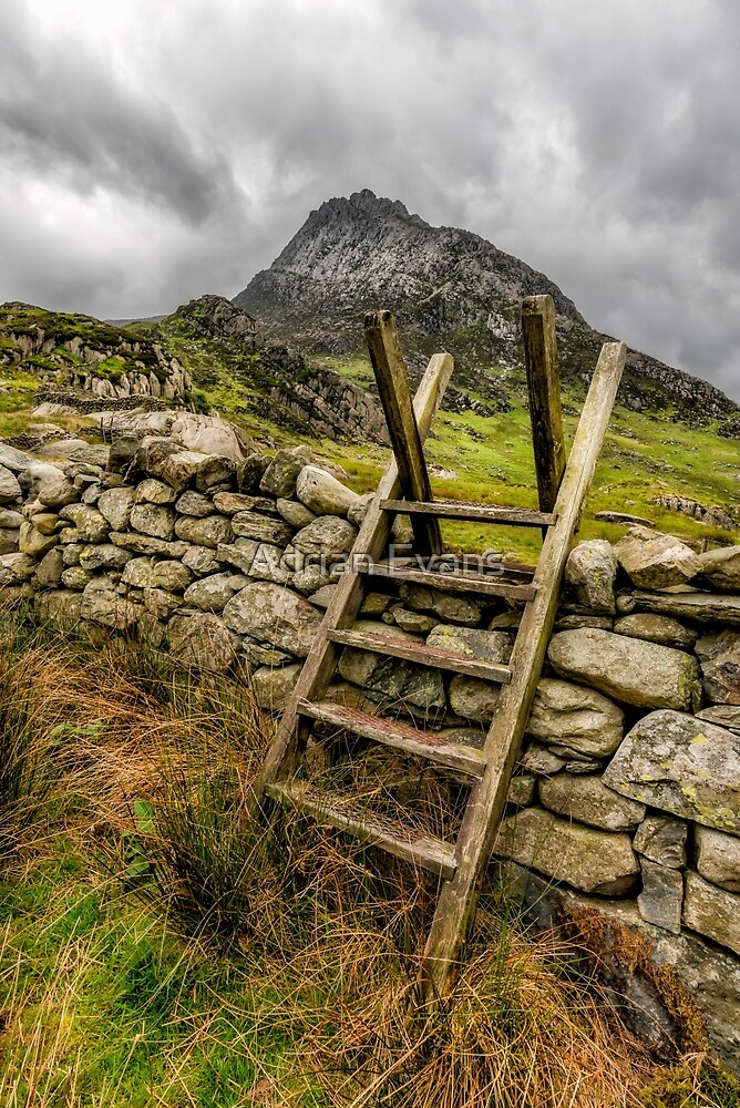 View Of Tryfan  by Adrian Evans