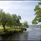 Cazaux et Sanguinet Lake and stream by 29Breizh33