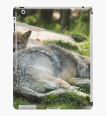 Timber wolf and pup iPad Case/Skin