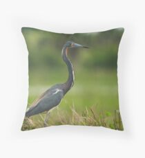 Tri Color On Watch  Throw Pillow