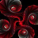 Spiral x4 by Deborah  Benoit