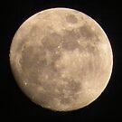 'Moon Over Maine' by Scott Bricker