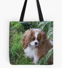 one cute little chap Tote Bag
