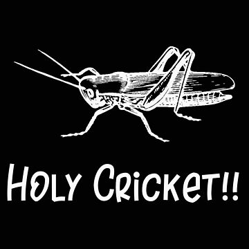 Insect Holy Cricket Wizard by stacyanne324