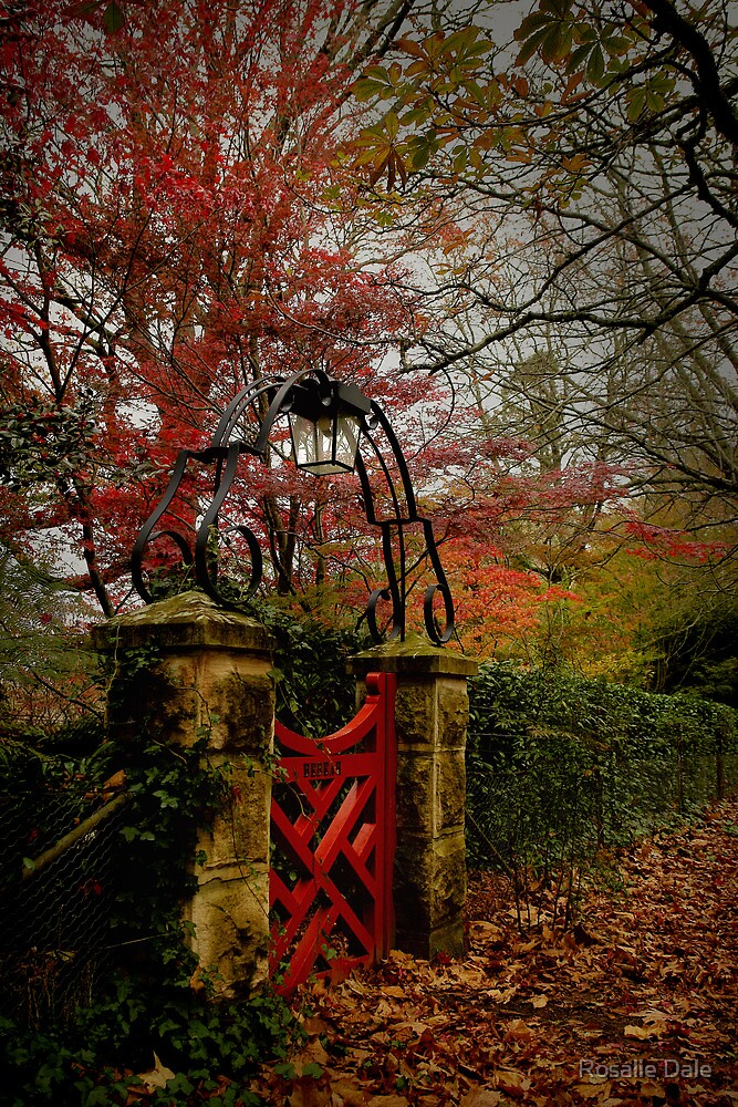 The Small Red Gate  ... Autumn in Mt Wilson  by Rosalie Dale