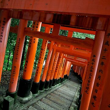 10000 Tori Gates Fushimi Inari Shrine de TokyoLuv