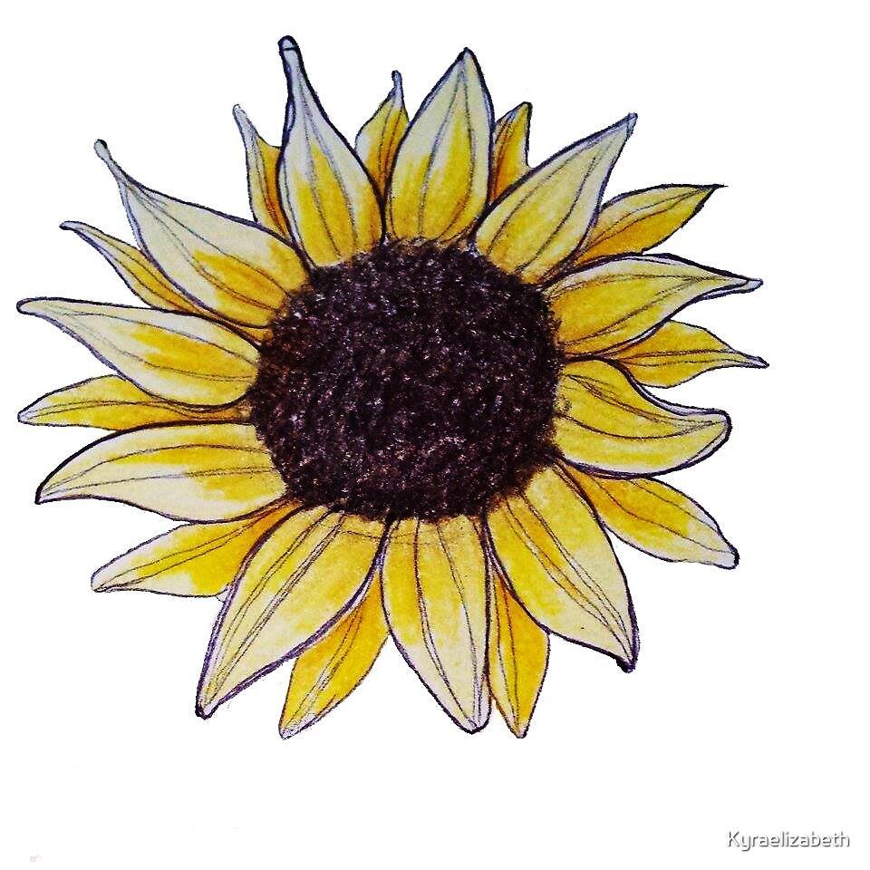 Drawn Sunflower by Kyraelizabeth