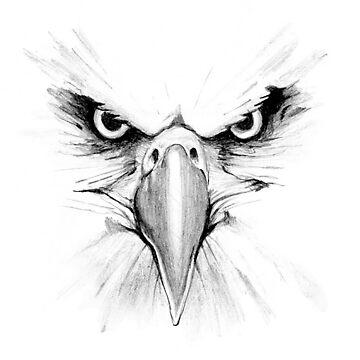 Eagle Face by seizethejay