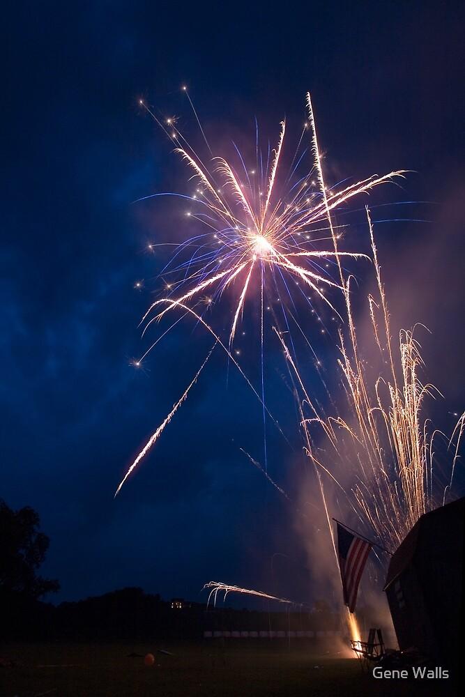 Friends, Family & Fireworks by Gene Walls