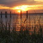 Amelia River Sunset 1 by Bob Hardy