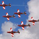 Roulettes formation flying by Stecar