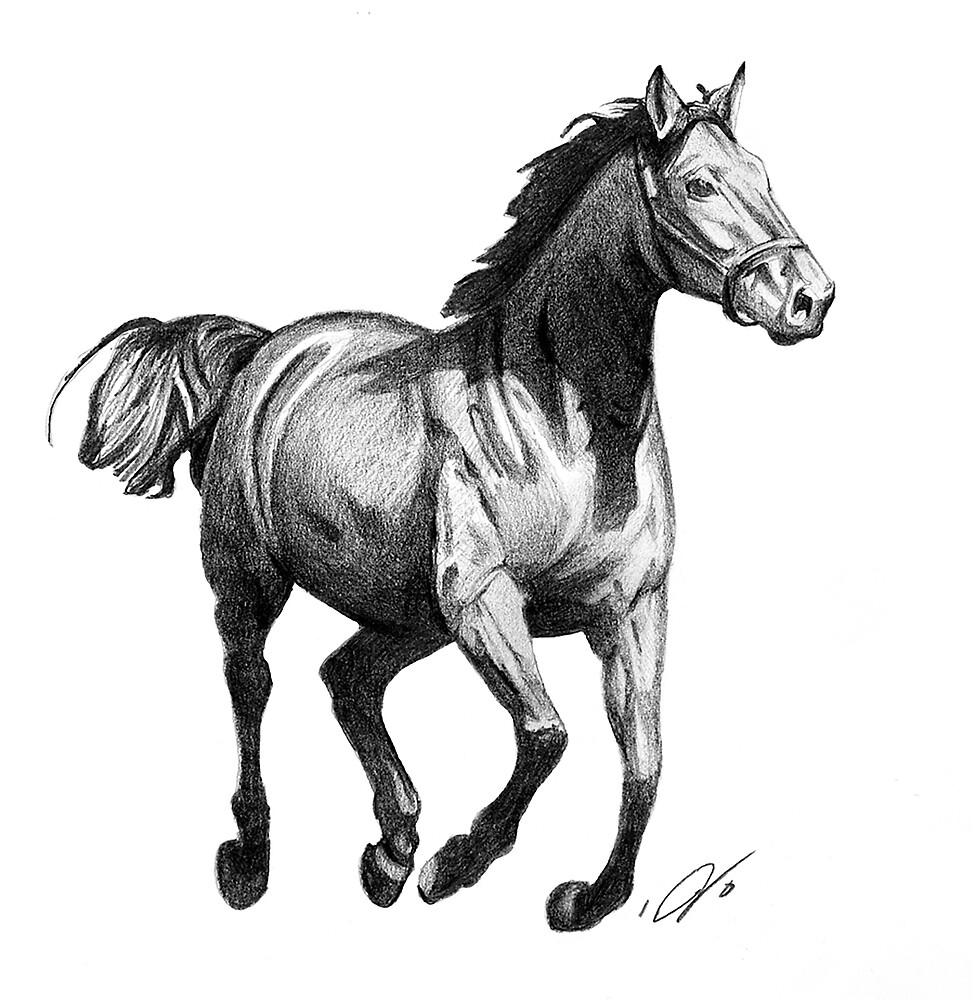 Horse Running by seizethejay
