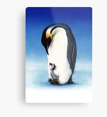 Emperor penguin with chick Metal Print