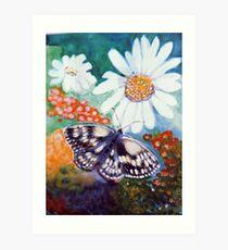 Butterflys and Daiseys Art Print