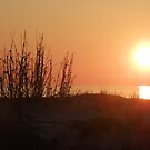 Sunrise on Tybee by Luann Gingras