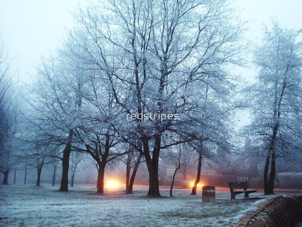 Frosty lights  by redstripes