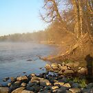 Mississippi river Shades of Fog by NiftyGaloot