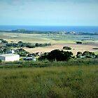 Farmland near Tower HIll Vic.  by EdsMum
