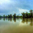 Tisza river by zolim