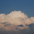 White Clouds by Vonnie Murfin